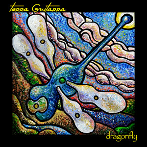 dragonfly_300